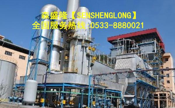 益阳循环水阻垢剂SG715【高温】产品应用实例