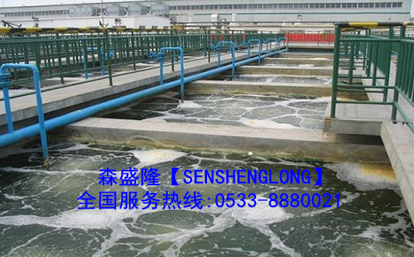 湖南粘泥剥离剂SN097【高效广谱】产品应用